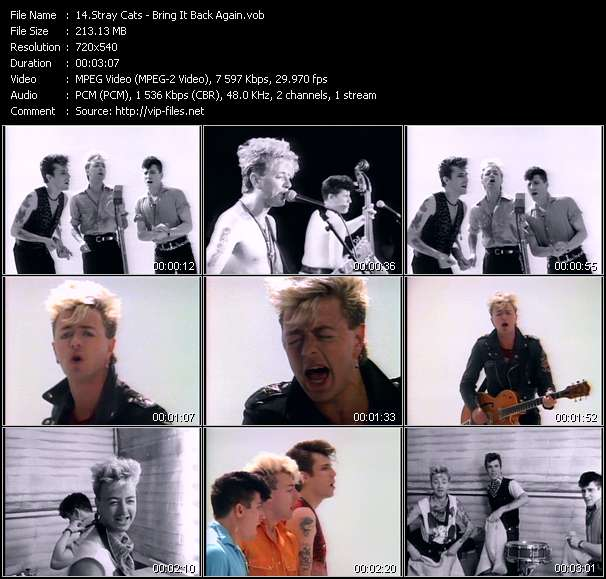 Stray Cats Video Clip(VOB) vob