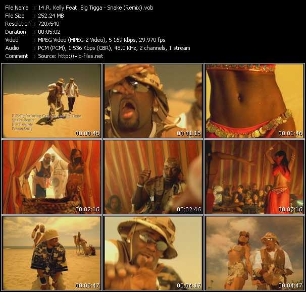 R. Kelly Feat. Big Tigga Video Clip(VOB) vob