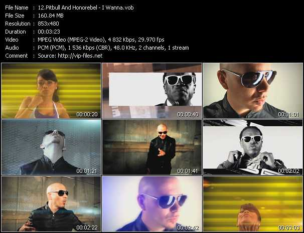 Pitbull And Honorebel Video Clip(VOB) vob
